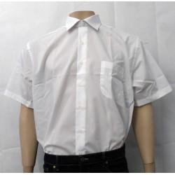 Camisa caballero clásica...
