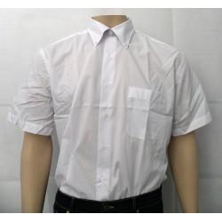 Camisa caballero cuello con...